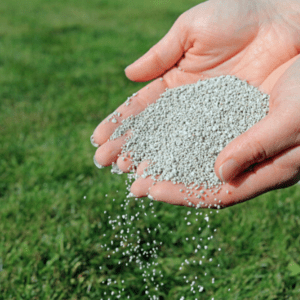 Fertilizer being spread by hand